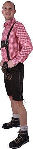 Almwerk Herren Trachten Lederhose kurz Modell Sepp in schwarz und braun, Farbe:Braun;Größe Herren:50 -