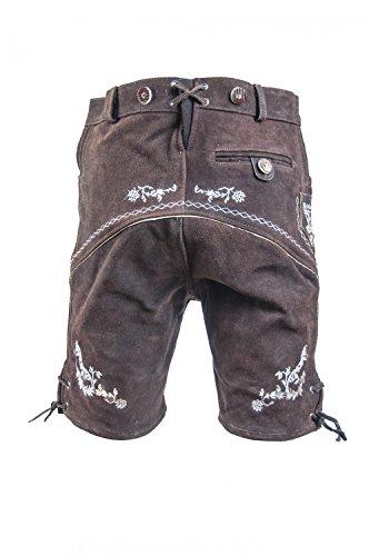 Almwerk Herren Trachten Lederhose kurz Platzhirsch, Farbe:Braun;Lederhose Größe Herren:48 -